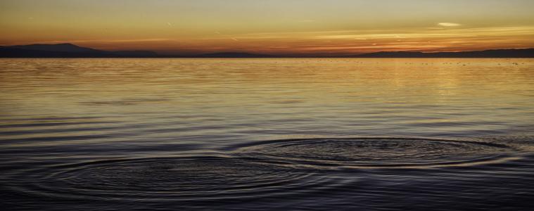 ¿Qué es el Mindfulness? Aprendiendo a vivir el presente