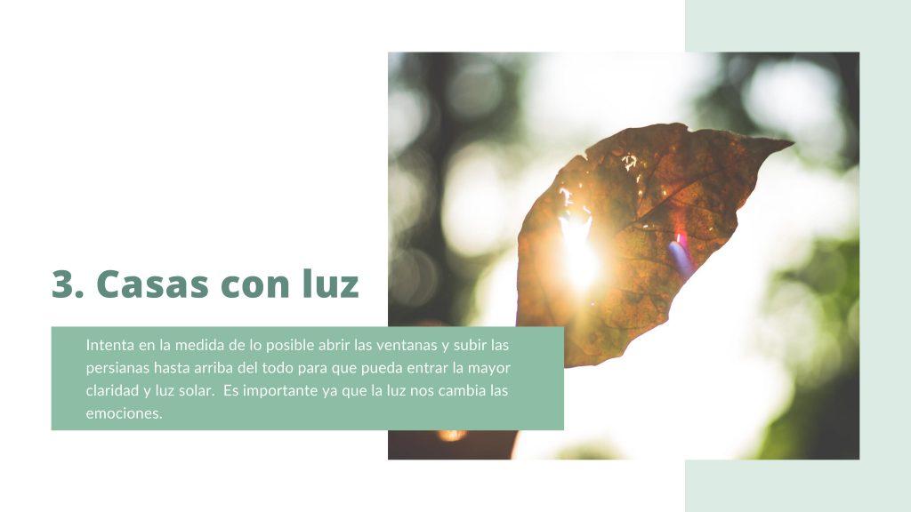 Casas con luz. Terapia online. Terapiayemoción